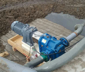 畜牧业养殖场:粪便输送泵