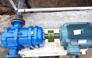 旋转活塞转子泵